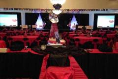 Galas-And-Special-Events---Drape---Screens